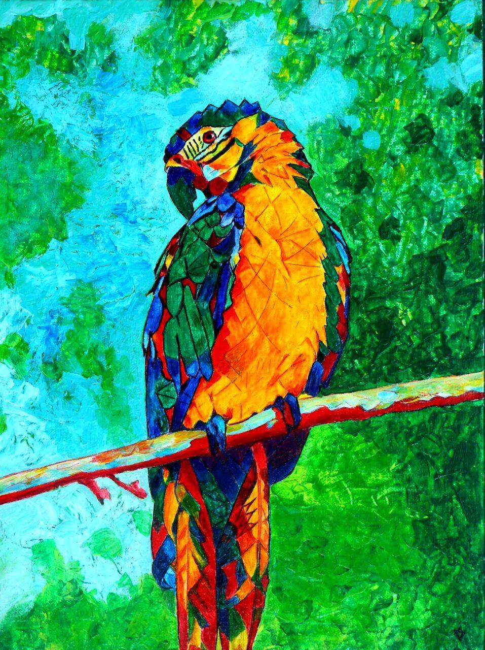 Ara-Papagei